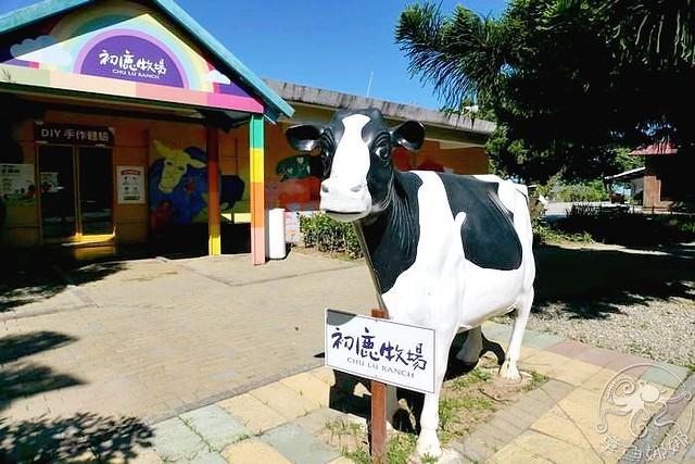 台東親子景點【初鹿牧場】與大自然最接近的牧場,遼闊大草原環境下飼養的荷蘭乳牛!有可愛動物區、放牧區、滑草場,來牛奶吧品嚐最新鮮好喝的鮮乳! @章魚娜娜 ∞ 玩味生活