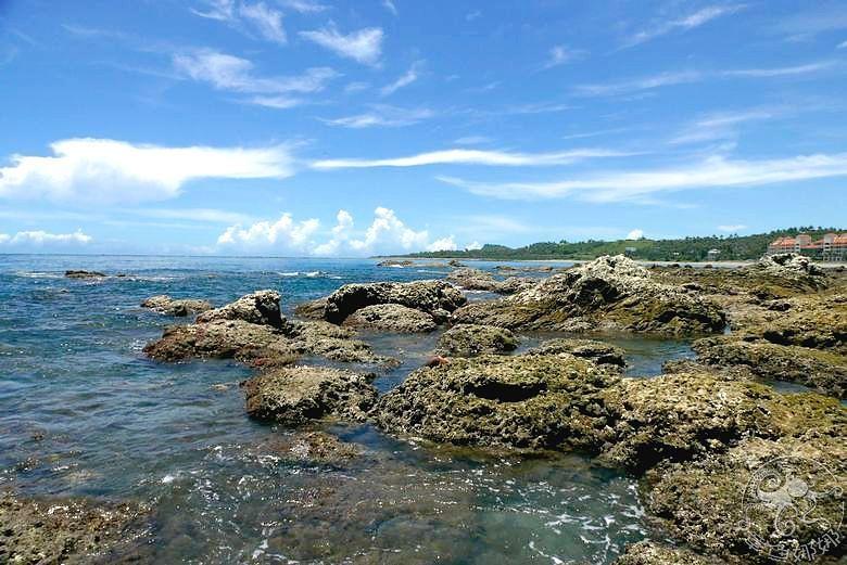 台東親子景點【富山漁業資源保育區】帶孩子探索海洋世界,看見難得一見的生物,觀賞美麗的自然生態,用海藻饅頭餵食海中生物,來場親密互動喔! @章魚娜娜 ∞ 玩味生活